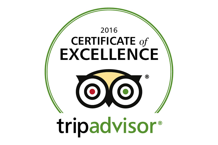 china-water-tripadvisor-certificate-of-excellence